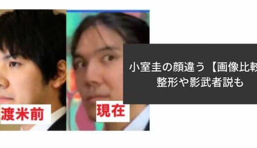 小室圭の顔が違う?眉毛や目つきが変化!別人みたいになった理由を調査!